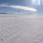 A lone emperor penguin, en route to McMurdo Centre