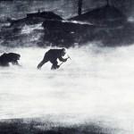 Mawsons Blizzard