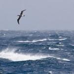 Southern Ocean by chrisbray.net