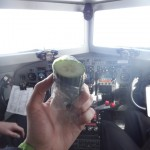 How friendship begins - being offered a piece of cucumber whilst flying at 4000metres over Antarctica - thanks Jim!